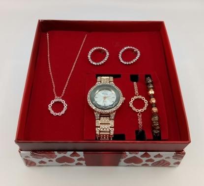 Saat Kolye Küpe Bileklik Kadın Seti resmi